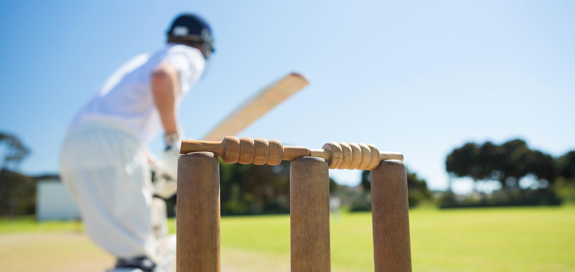 cricket blog image 1900x900